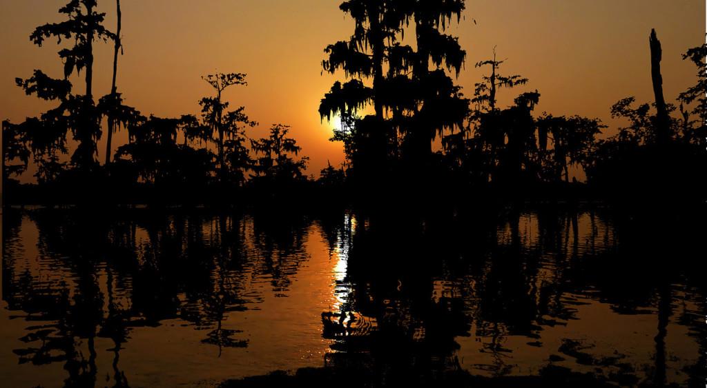 Il Bayou al tramonto | Recensione La linea del sangue di Jesmyn Ward